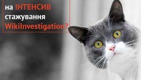 WikiInvestigation розпочинає інтенсив-стажування